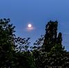 Untergehender Mond in den Morgenstunden (JohannFFM) Tags: mond morgenstunde