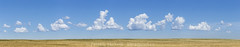 Clouds (burntpixel.ca) Tags: canada manitoba winnipeg photo photograph rural fine art patrick mcneill burntpixel wrench777 beautiful spectacular canon 6d canon6d landscape horizontal nature travel wander prairie panorama wide stitched clouds crop field sky blue brown