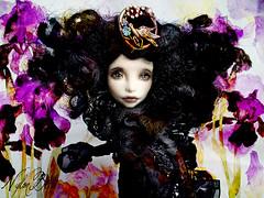 Dark  Irirses (NylonBleu) Tags: monster high mh doll poupée ooak custo custom repaint iris irises flowers fleurs dark sombre noir black nylonbleu