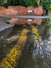 136/365 The Hollies ([inFocus]) Tags: iphone iphone7plus 365 3652017 project365 street reflection didsbury colour yellow puddle rain lines curve bend corner sign