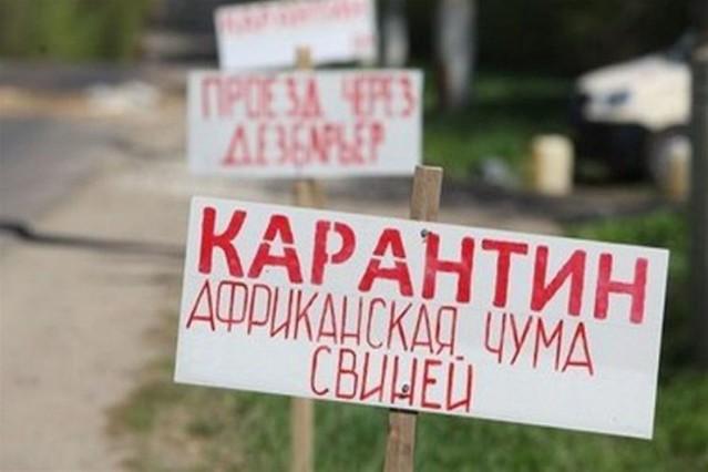Генпрокуратура выявила виновных враспространении вспышки чумы свиней вСамарской области