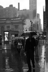 deluge on 42nd Street (Towner Images) Tags: us usa manhattan ny nyc towner townerimages newyork bigapple america grandcentral grandcentralterminal station rail railway light lighting illumination building architecture street streetscape urban city cityscape mono monotone monochrome monochromatic bw blackandwhite greyscale whiteandblack rain deluge umbrella steam downpour