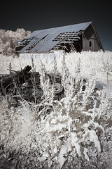 Carroll County Infrared II (Notley) Tags: httpwwwnotleyhawkinscom notleyhawkinsphotography notley notleyhawkins 10thavenue barn farm ir infrared rural carrolltonmissouri carrollcountymissouri 2017 may spring
