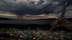 Pictueres of and during the midnight sun in Alta Nothern Norway. Also from the World Heritage Centre of rock art https://www.altamuseum.no (norfoto78) Tags: nothernnorway nordnorskreiseliv alta rockart worldheritage midnightsun night nature seascape arctic art finnmark travel visitalta visitnorway north