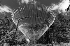 Bas-St-Laurent Métis 12 (Agirard) Tags: art artcraft bw nb blackwhite noirblanc batis 18mm 2818mm sony a7ii metis garden quebec canada insolite