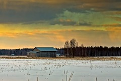 Old Barn Houses In The Springtime Sunset (k009034) Tags: 500px sky forest sunset nature clouds old tree building snow evening birch fields countryside agriculture barn rural wooden springtime no people finland tranquil scene copy space oulainen matkaniva teamcanon