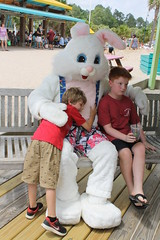 Easter Bunny 129