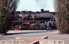 Loco 50 3575-3  |  Halberstadt DDR  |  1982 (keithwilde152) Tags: br5035 halberstadt dr ddr east germany 1982 station platforms people steam locomotives symbol red star outdoor spring sun