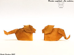 Péché capital: La colère. (Magic Fingaz) Tags: aslan barthdunkan leã león lion löwe origami origamilion oroszlán лев शेर สิงโต 사자 ライオン 狮子