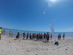 G0178374 (Visit Pilar de la Horadada) Tags: swimmers meeting point hibernismare swim natación nadar milpalmeras pilardelahoradada alicante costablanca vegabaja comunidadvalenciana quedada beach strand swimm
