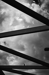 All alone... (elgunto) Tags: bird sky lines clouds highcontrast blackwhite bw sonya7 samyang samyang85mm14