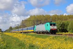 NMBS 2804, Delft, 25-04-2017 (frank_e186) Tags: nmbs sncb ns nederlandse spoorwegen trein spoor bahn eisenbahn zug train railway railroad rail traxx e186 196 hle28 2804 ic brussel intercity bombardier kassel delft 9252