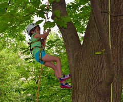 DSC_1280 (Montgomery Parks, MNCPPC) Tags: popupinmontgomeryparks bethesda treeclimbing climbatree tree climbingtrees kids children boys girls arborists elmstreeturbanpark spring may may2017 leaves treetrunks toddler