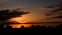 * Gold West (velodenz) Tags: gold golden sunset sky cloud red orange velodenz fujifilmx100f fujifilm x100f digital picture pic image phot photo photograph photography saltford banes bnes england united kingdom uk great britain gb cielo top 20 twenty top20 toptwenty interesting flickr trending outside views repostmyfuji repostmyfujifilm fuji 2000 2000views xseries skyscape