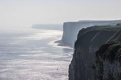 Bempton Cliffs (Glenn Pye) Tags: bemptoncliffs cliffs cliff sea northsea nature nikon nikond7200 d7200