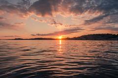 Last Light (Fredrik Lindedal) Tags: ocean sun sunlight sunrays sunbeam sunset sweden sverige sky skyline clouds colors colorful water harmony beautiful mindfulness