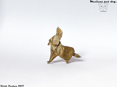 Mexican pet dog...Barth Dunkan (Magic Fingaz) Tags: anjing barthdunkan chien chó dog hond hund köpek origami origamidog perro pies пас пес собака หมา 개 犬 狗 chihuahua