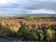 Blick von der Mörschieder Burr im Frühling 2017 (AndreasHerbert) Tags: hunsrück mörschied nationalparkhunsrückhochwald