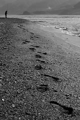the Fisherman (parenthesedemparenthese@yahoo.com) Tags: dem bw backlighting blackwandwhite ete monochrome nb noiretblanc people torrefaro canoneos600d day ef50mmf18ii empreintes exterieur fisherman footprints italia italie italy journée mer messina messine outdoors paisible paysage peacefull personne pêcheur sea seascape seashore sicile sicilia summer été