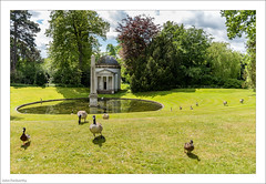 Palladian Picture 140/365 (John Penberthy ARPS) Tags: 20may17 365the2017edition 3652017 chiswickhouse d750 day140365 johnpenberthy nikon palladian ducks geese grotto