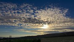 a thousand Golden Fleeces ... (lunaryuna) Tags: england dorset coast holidaypark durdledoor sky clouds cloudscape sunset sundown lightmood beauty dusk lunaryuna