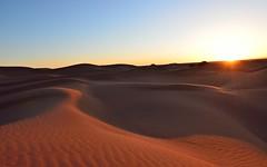 Desert sunset (Jean-Marc Vacher) Tags: dunes mhamid el ghizlane maroc morocco sand sunset mhamidelghizlane zagora