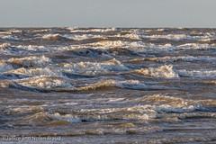 Waves on Galveston East Beach JN106033 (JaniceNolan_braud) Tags: galveston galvestoneastbeach galvestonisland northamerica texas unitedstates beach city coastalcity earlymorninglight island landscape morning water waterelement waves weather wind waterscape