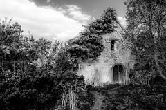 Maison & Jardin (Clydomatic) Tags: nb maison jardin végétation bois