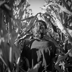 All that you do (spannerino) Tags: handprocessed ilfordlc29 mediumformat monochrome newzealand outdoor scanned slr vintage vintagecamera waistlevelviewfinder blackandwhite bronica canon9000f contrast film filmlives zenzanon 120mm 120mmfilm 120mmcamera 120mmvintage 6x6 rock girl bronicasqa zenzabronica surreal field corn
