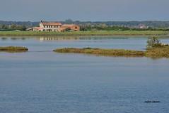 Laguna (stefano.chiarato) Tags: mare laguna acqua rosolinamare veneto italy reflections