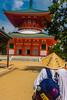 Koyasan, Wakayama Prefecture, Japan (David Ducoin) Tags: asia boudhism japan koyansan monk pilgrim religion shinto shrine temple koyasan wakayamaprefecture jp