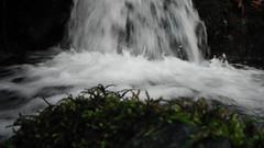 Cascade Tourmantée (Astral Eye) Tags: nature eau cascade caillou rocher mousse rivière canal water végétal naturel extérieur végétation noir blanc