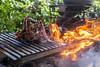 Churrasco de cortes especiais (rafaellazanol) Tags: angus wagyu novilho precoce churrasco churrascada parrilla fogo carne carnivoros somos da mato grosso rafaellazanol linguiça costela cordeiro acompanhamentos gastronomia culinária boi tiras caldos chorizo ancho fraldinha tbone picanha alho batata mal passado ponto do guerreiro ao grill grilled meat fire firecooking barbecue