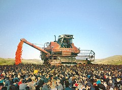 hh (woodcum) Tags: harvest harvester combine people crowd crowdy forcemeat meat recycling sky collage surreal color vintage retro woodcum grain