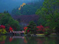 Shiramizu Amidado (Someyoshi Nozuki) Tags: shiramizuamidado tempie nationaltreasure