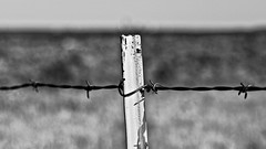 Post Office (brev99) Tags: d610 nikon50mmf18d blackandwhite post barbedwire landscape tulsa bokeh blur blurredbackground ononesoftware on1photoraw2017 dxofilmpack5