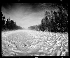 Visions (tsiklonaut) Tags: pentax 67 6x7 film analog analogue analogica analoog 120 roll medium format rollei retro 400 black white negro y blanco bw mustvalge mono monochrome winter talv talvine loodus nature snow field forest mets väli shapes landscape maastik estonia eesti estonian baltic dramatic soul hing travel discover experience tunnel vision drum scan drumscan scanner pmt photomultipliertube sky taevas maa lumi lume lumine