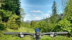 am Trail (twinni) Tags: mw1504 16052017 bike mtb biketour heuberg salzburg austria österreich flachgau bergziege winterbike winterradl 20