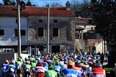20170311_002 (Continental Team AMPLATZ - BMC) Tags: mariostiehl stiehlphotographyberlin bestphotographer stiehlpics cycling 14istrianspringtrophy2017 stage2
