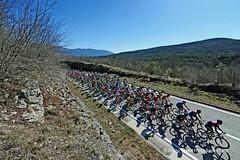 20170311_010 (Continental Team AMPLATZ - BMC) Tags: mariostiehl stiehlphotographyberlin bestphotographer stiehlpics cycling 14istrianspringtrophy2017 stage2