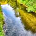 Rio de Bedon