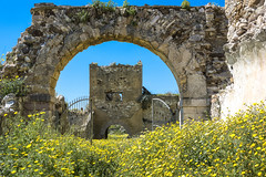 follow the yellow line (the-father) Tags: castle inicy sicily italy yellow flower abandoned lost wall bluesky sunny