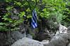Φαράγγι της Γκούρας 1 - Goura gorge 1 (st.delis) Tags: φαράγγιτησγκούρασ ελληνικήσημαία πλατάνι πάρνηθα αττική ελλάδα ελληνικήχλωρίδα gouragorge hellenicflag planetree platanus parnitha attica hellas