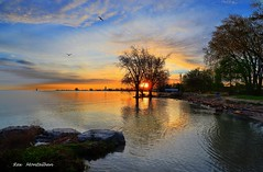 sunrise through the trees (Rex Montalban Photography) Tags: rexmontalbanphotography sunrise portdalhousie niagara