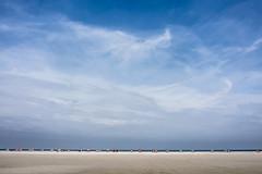 Estival expanse (Ulrich Neitzel) Tags: amrum beach beachchair expanse himmel horizon horizont insel island landscape landschaft mzuiko1250mm meer nordsee northsea olympusem5 sand sea sky strand strandkorb vastness weite germany