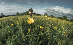 A Walk Through The Meadow (Rob Pitt) Tags: spring grass meadow inspiration buttercups wirral cheshire ellesmere port little sutton hooton outdoor depth field landscape bright serene fisheye samyang 8mm