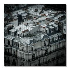 Les Toits de Paname (Blain Nicolas) Tags: nblain nicolas blain paris toits paname france bw nb noiretblanc blackandwhite