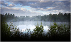 Lake with morning fog (na_photographs) Tags: see teich fog nebel dunst
