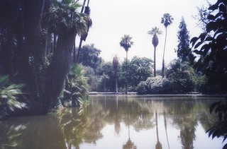 Los Angeles County Arboretum and Botanic Garden ~ HIstoric Site ~ Vintage
