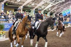 17429_Sydney_CDI_Evening_Pres_6959.jpg (FranzVenhaus) Tags: athletes dressage australia equestrian riders horses ponies rug siec nsw sydney newsouthwales aus